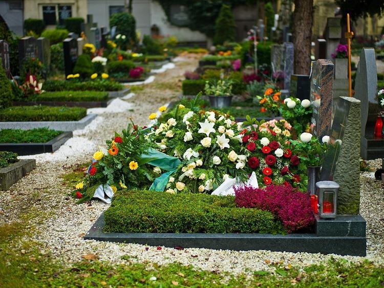 Можно ли на кладбище сажать цветы из своего сада 63