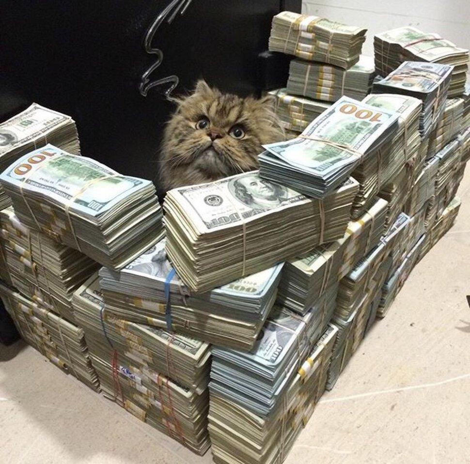 Деньги прикольные фото картинки, стихах новый