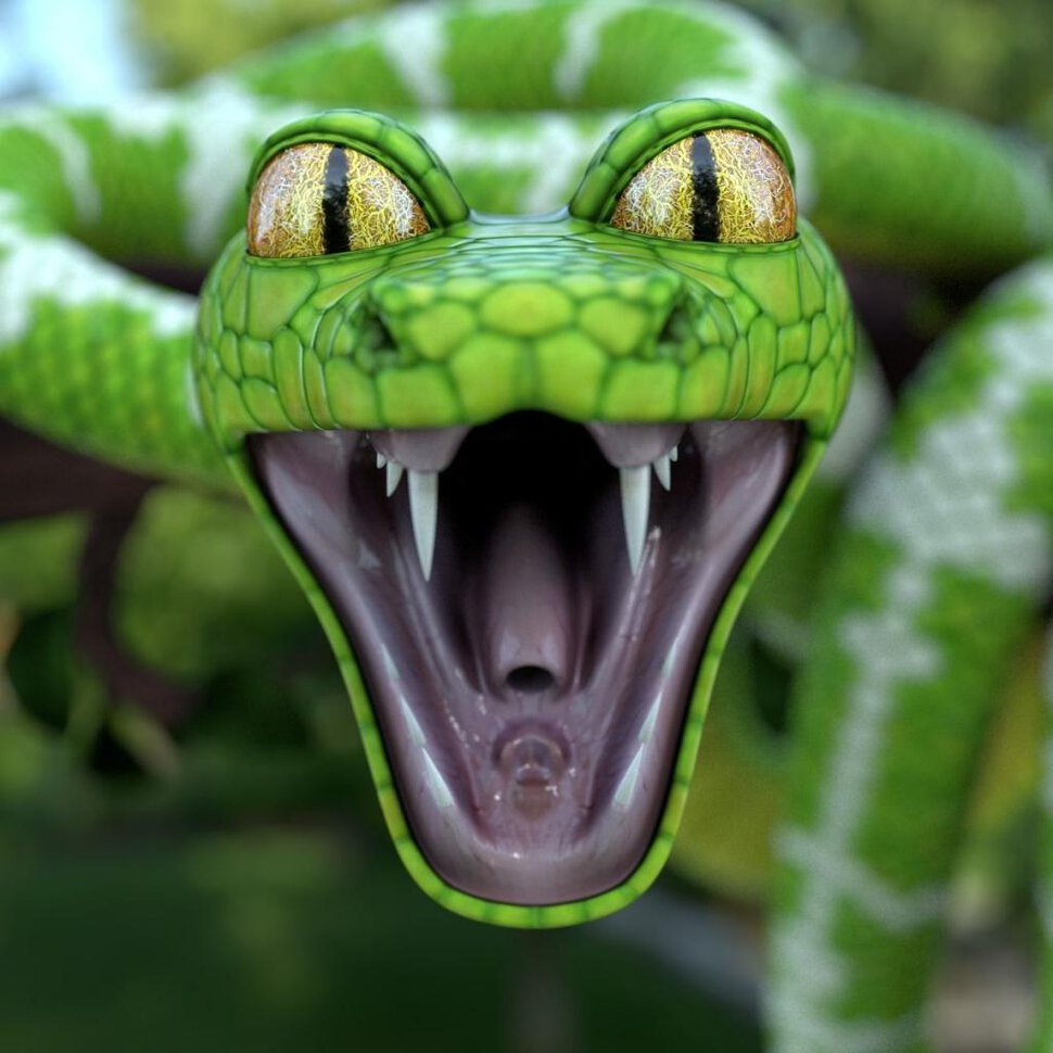 Смешные картинки змея, авиация картинки