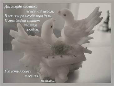 стихи свадьба голуби кого была