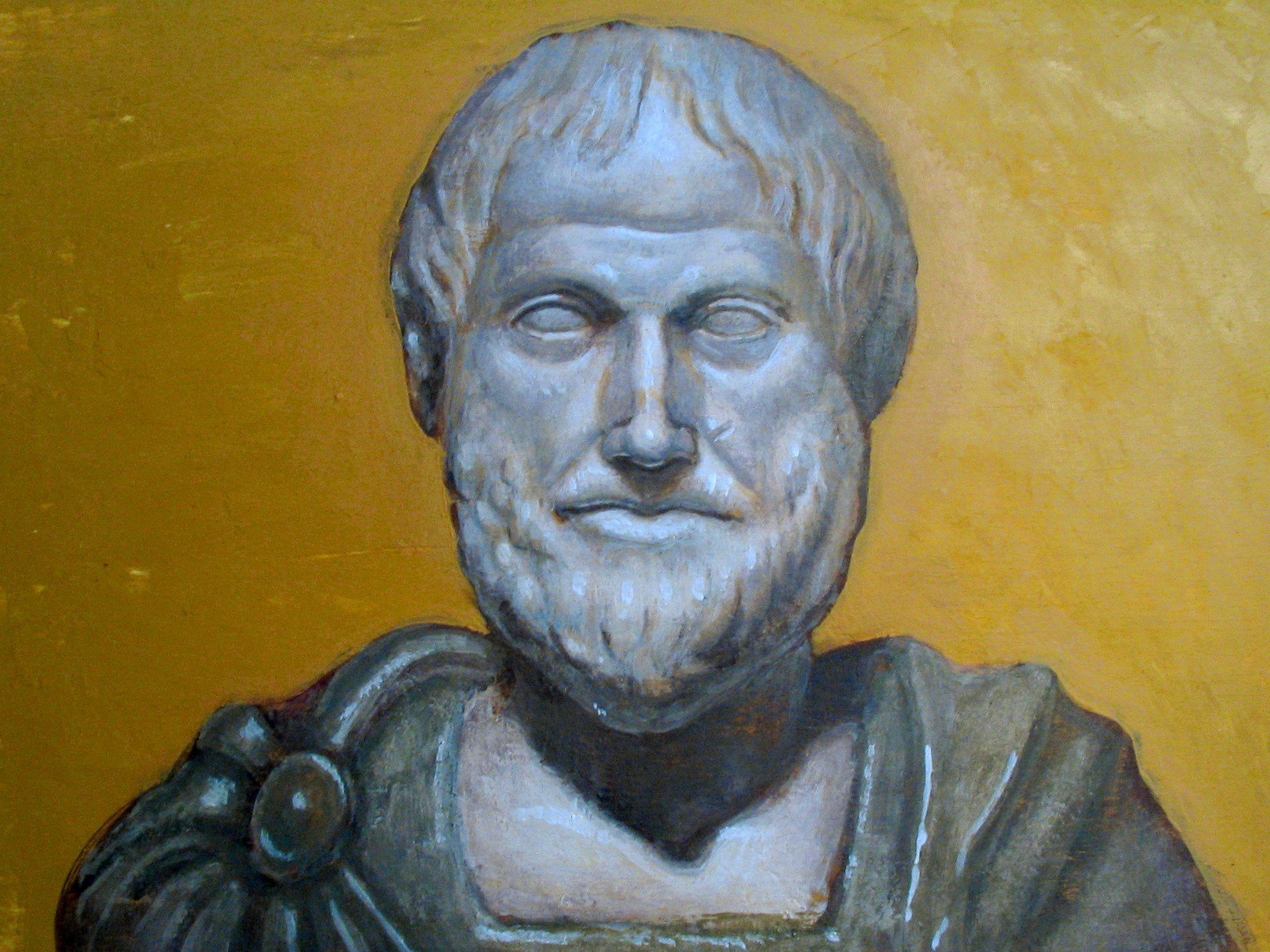 a biography of aristotle and his contributions to science Top 10 contribution of aristotle to put it out rather bluntly, it is true that while aristotle established new frontiers in the field of life sciences, his escapades in physics fall shorter in comparison aristotle was the first to write a book that dealt with the specifics of psychology - his book de anima.