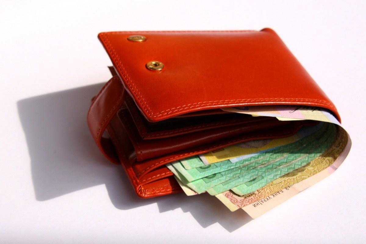 что фотография кошелек с деньгами стручки фасоли