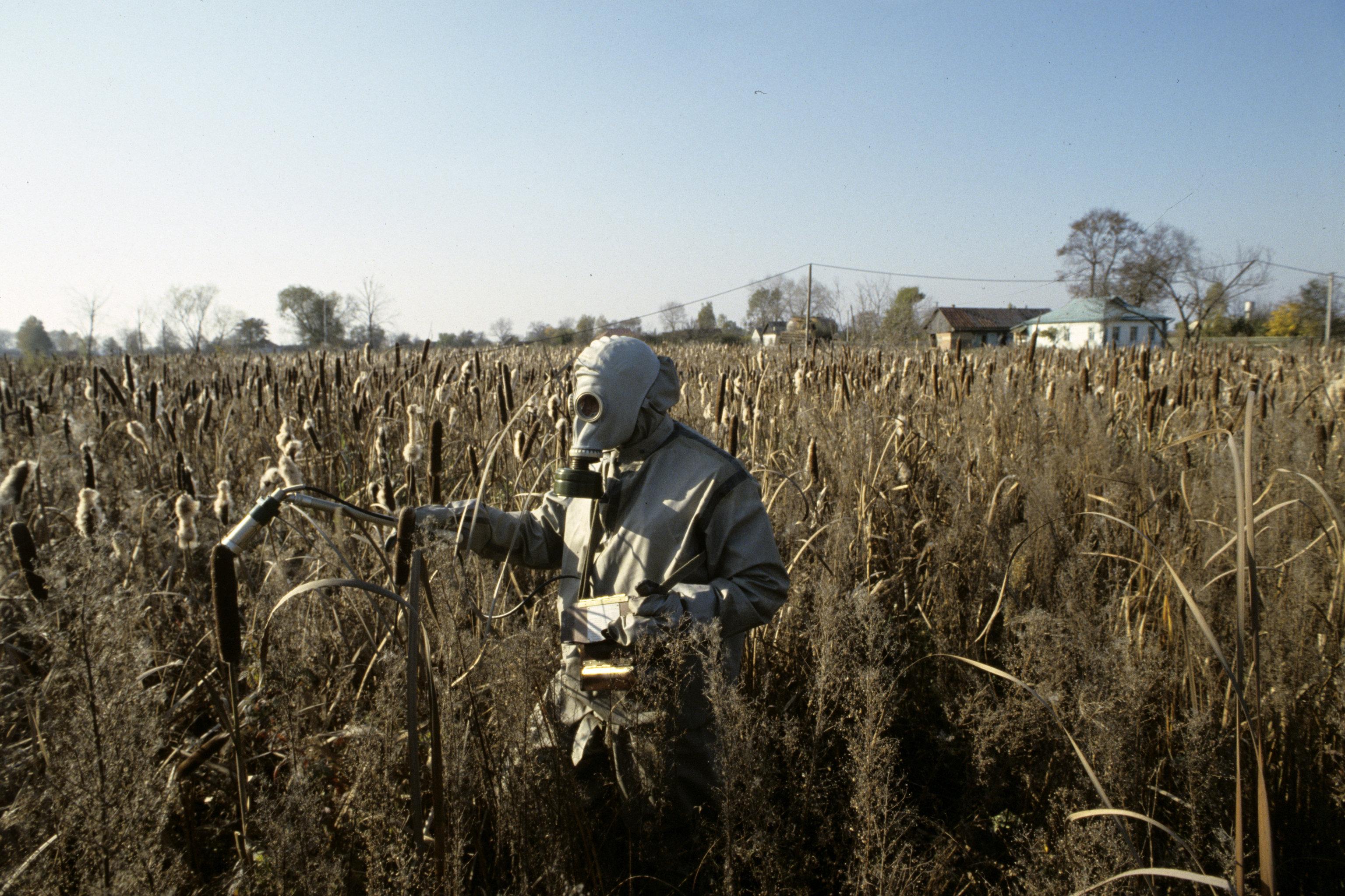 можно сделать территория заражения чернобыль фото уже