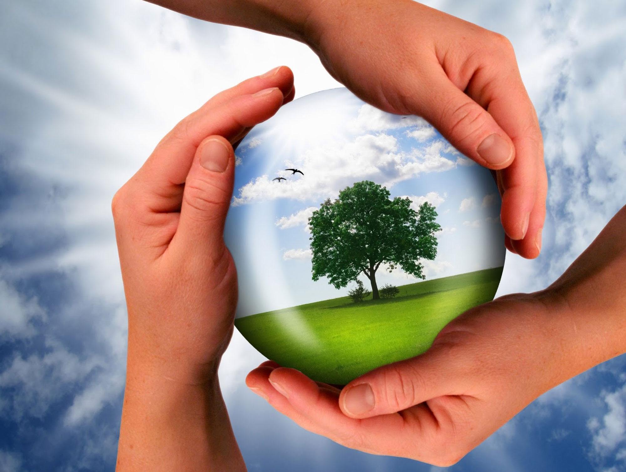 Картинки о экологии природы