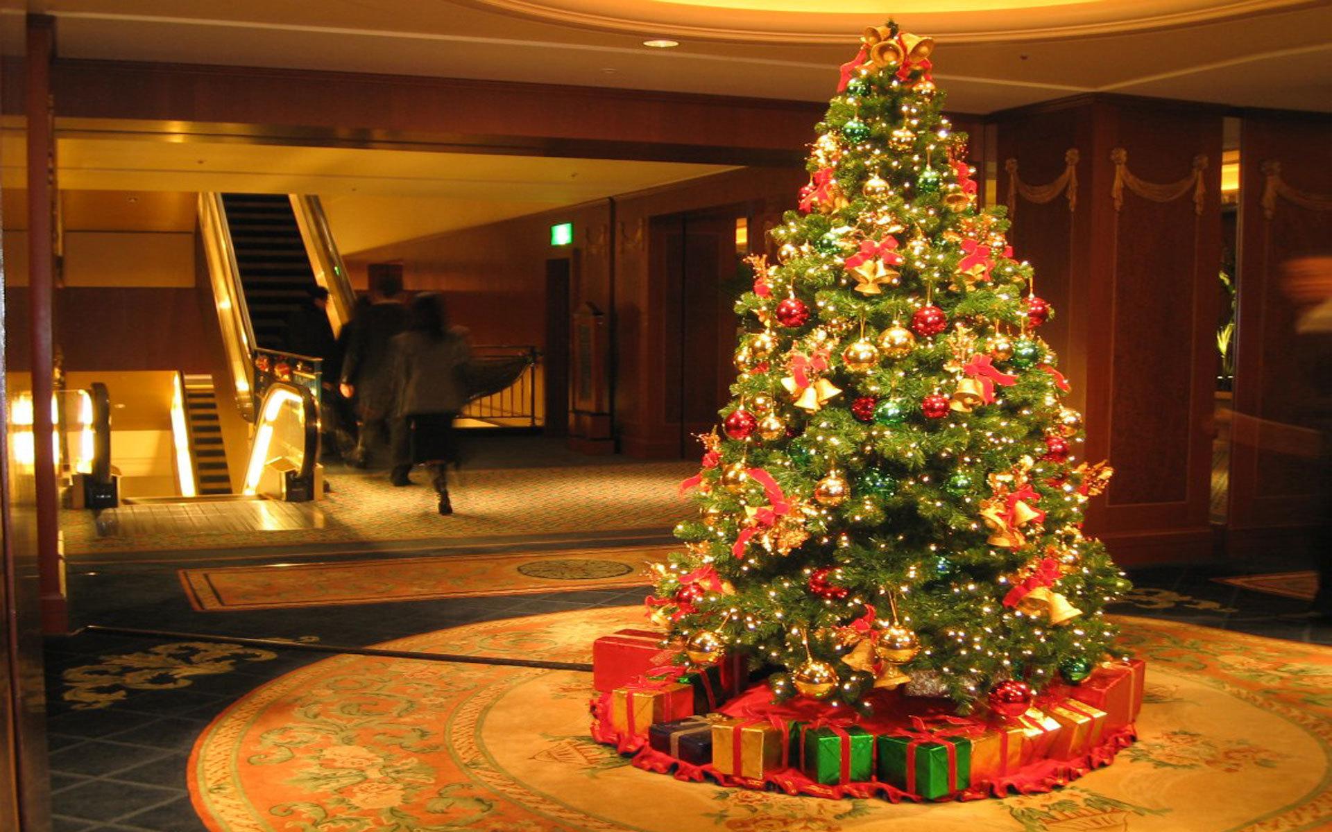картинка украшенная елка дома