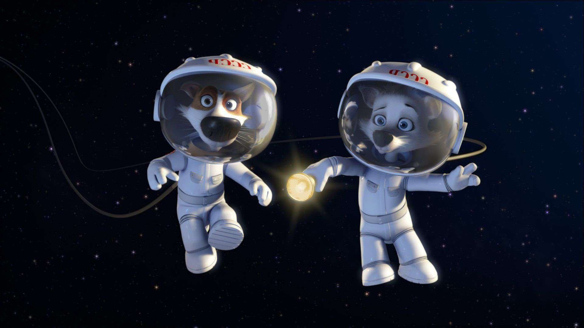 любимой сестре, картинки животные в космосе как отдельное