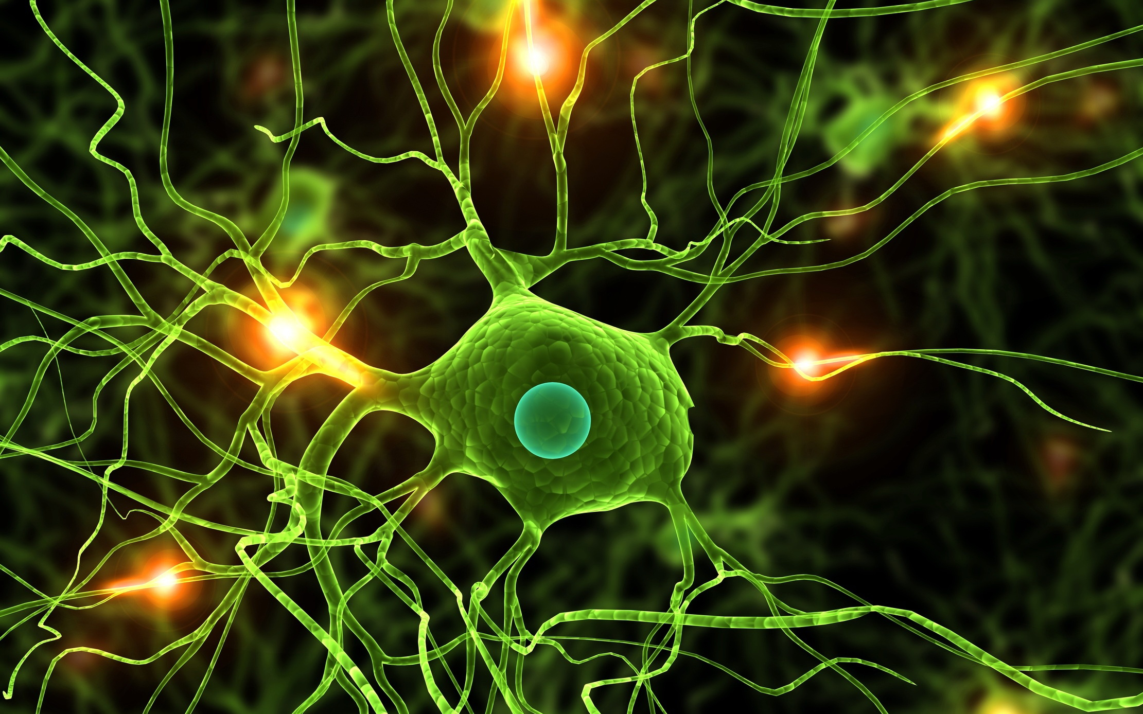 research on neuro transmitters Neuro transmitters uploaded by nitisha much further research in the pharmaceutical industry to discover new inhibitors of monoamine uptake the debate as to whether inhibition of noradrenaline or serotonin was the most important in conferring antidepressant efficacy has swung one way and the.
