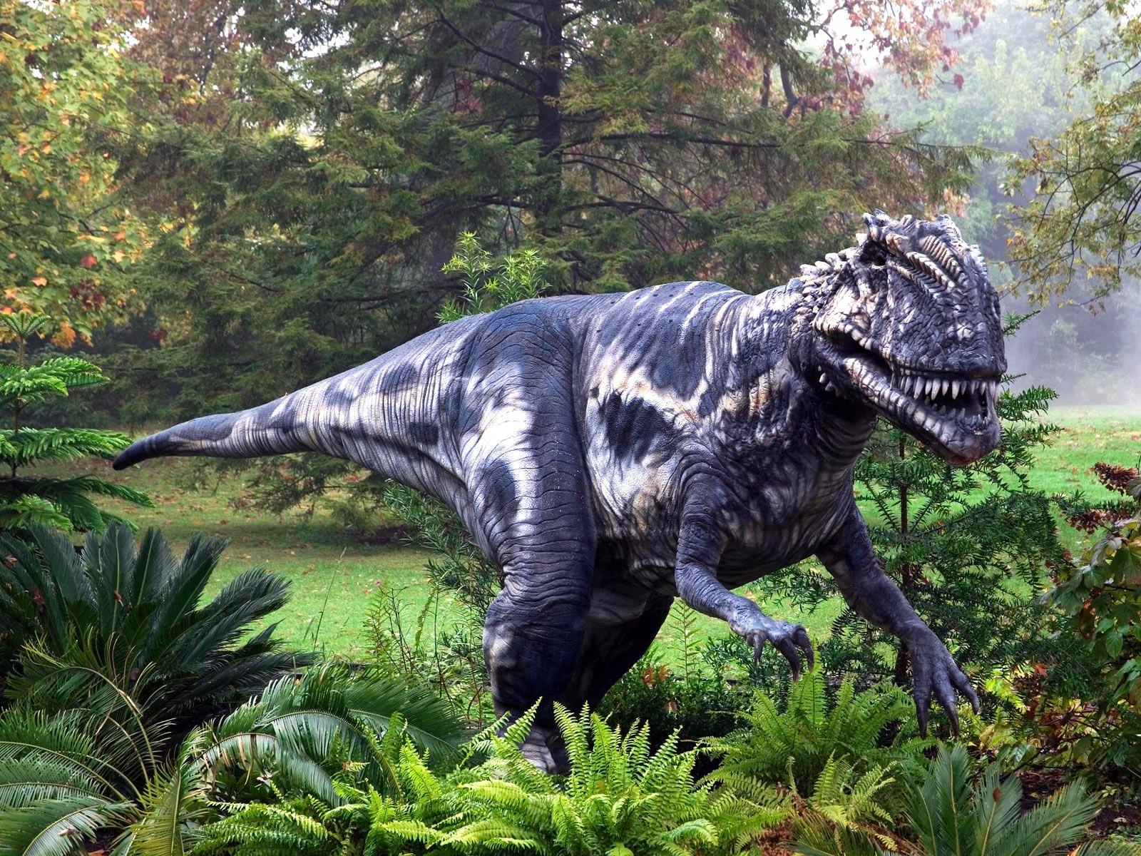 Картинки только про динозавров приспособлении