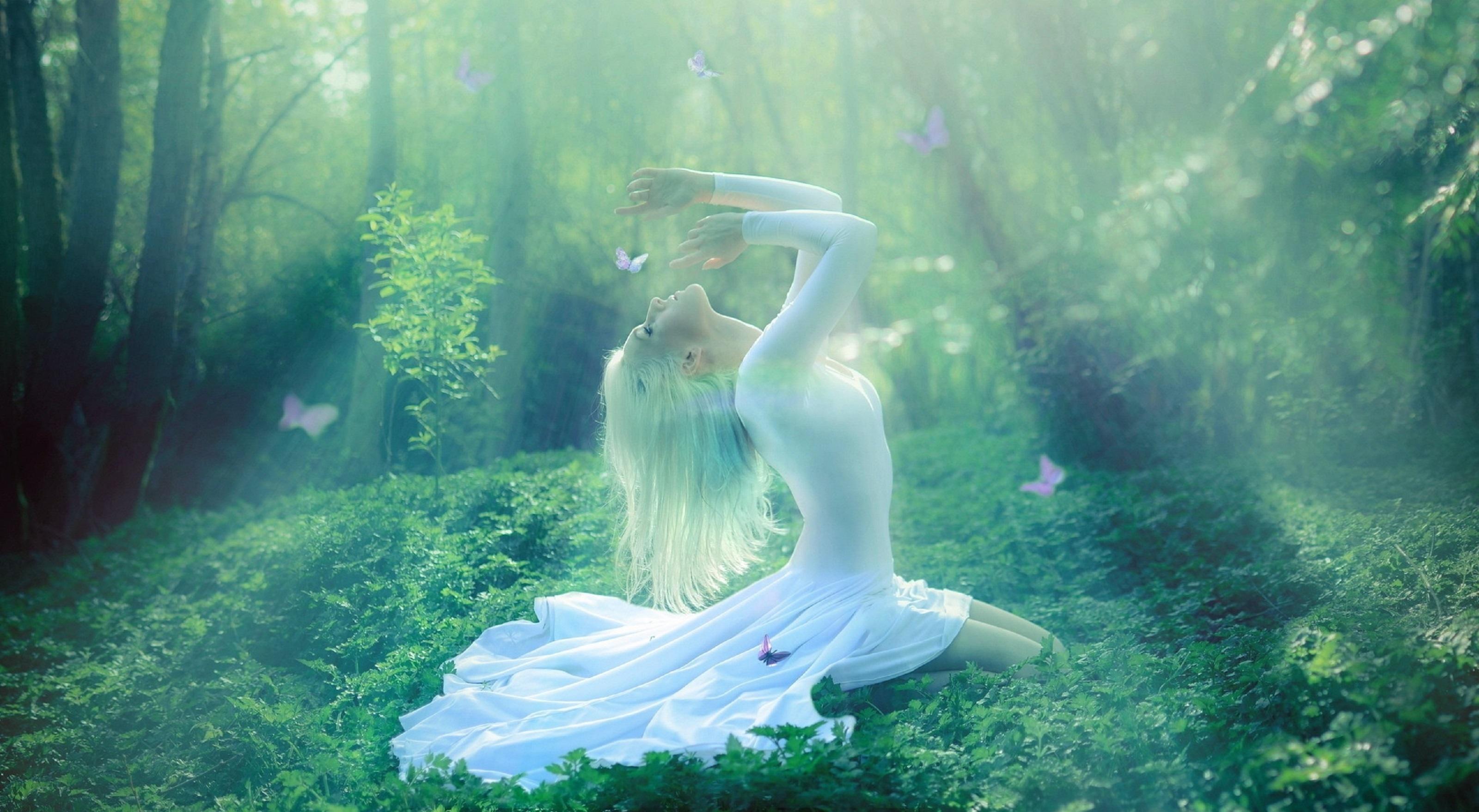 гармония мира фото белых цветов сочетание