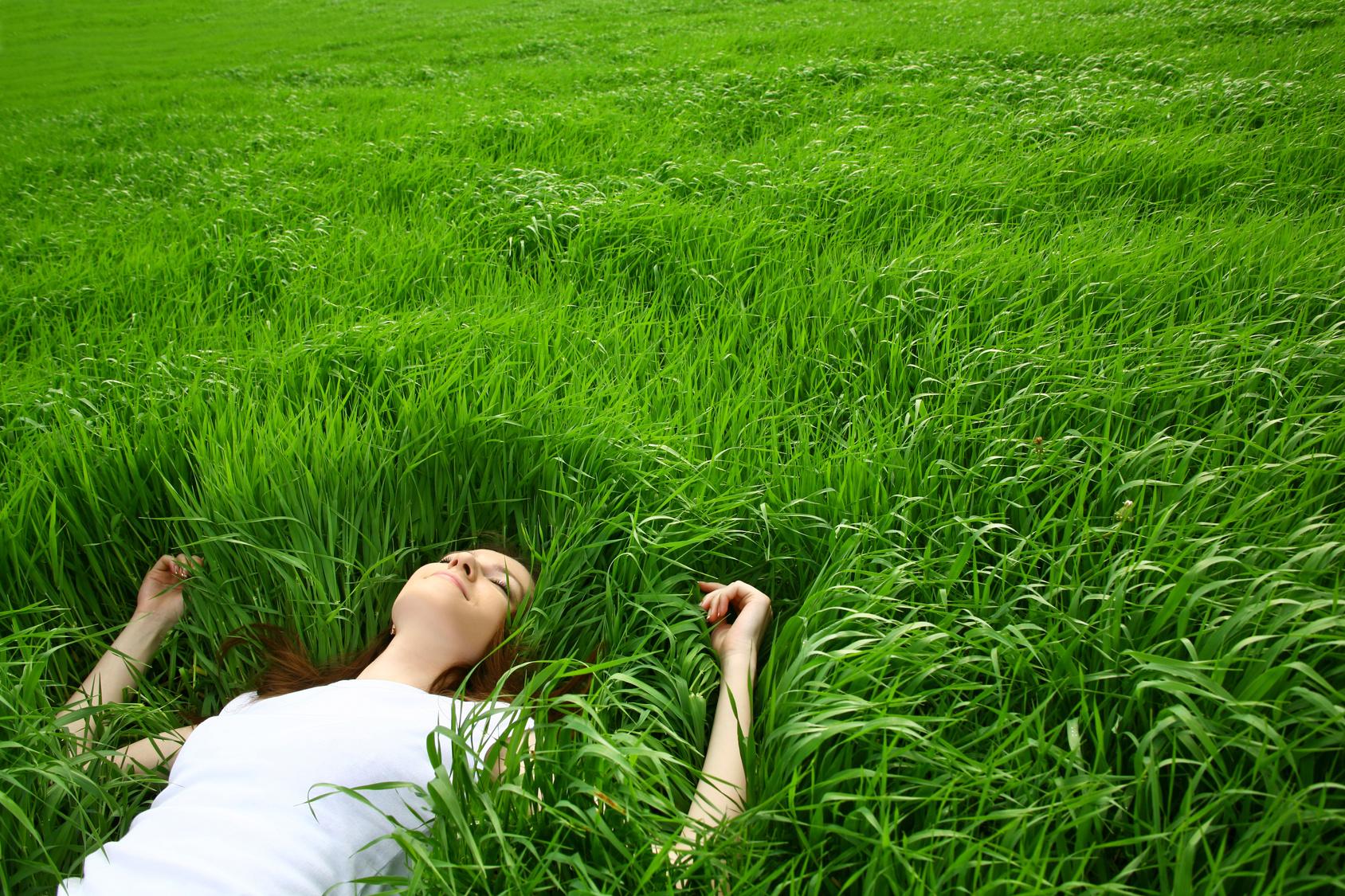 памятник мраморной фото в траве правила дочка