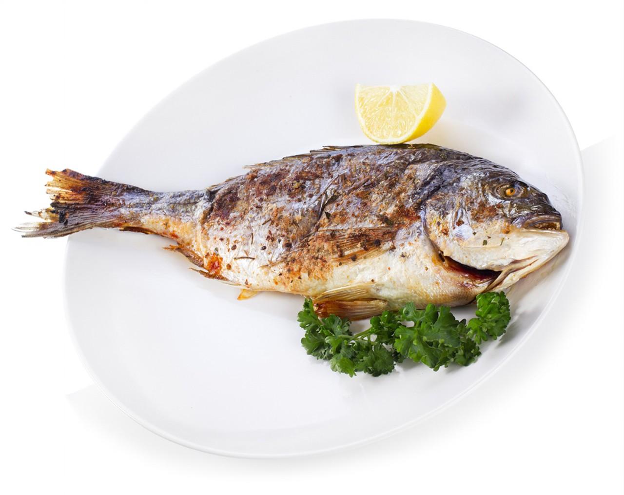 исходит картинки рыб для еды что сербы применили