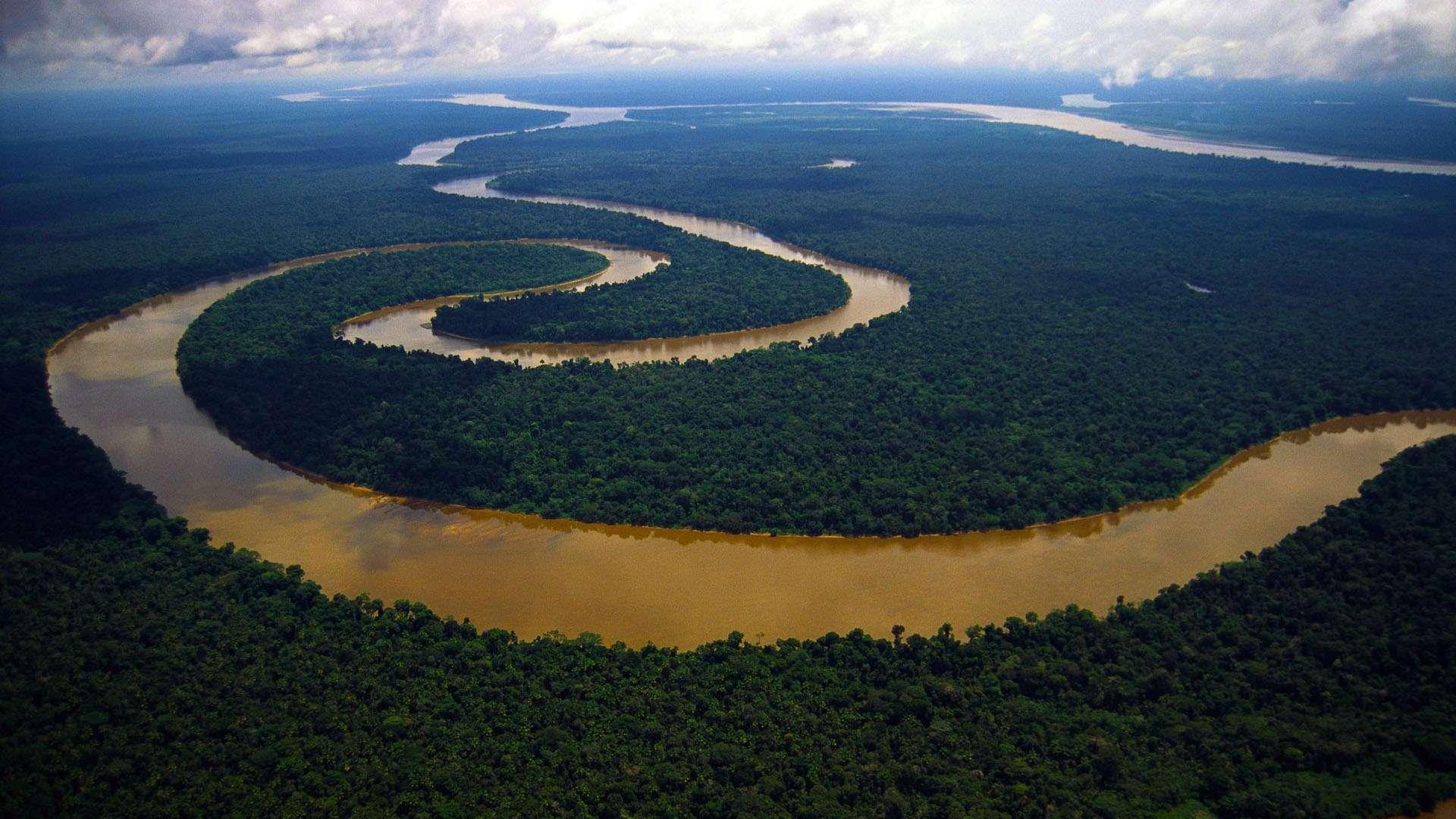 так картинки амазонок рек этой странице найдете