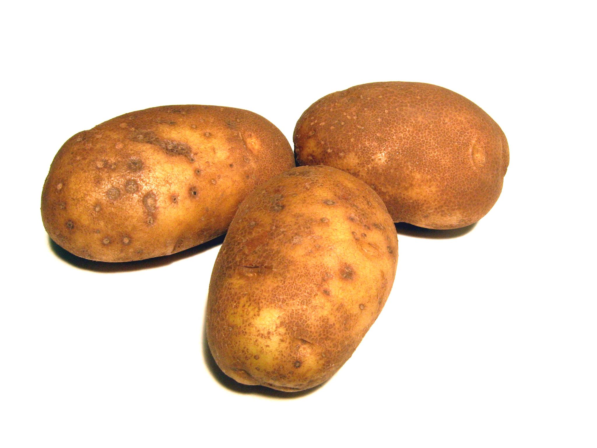 овощи картошка картинки считают, что если