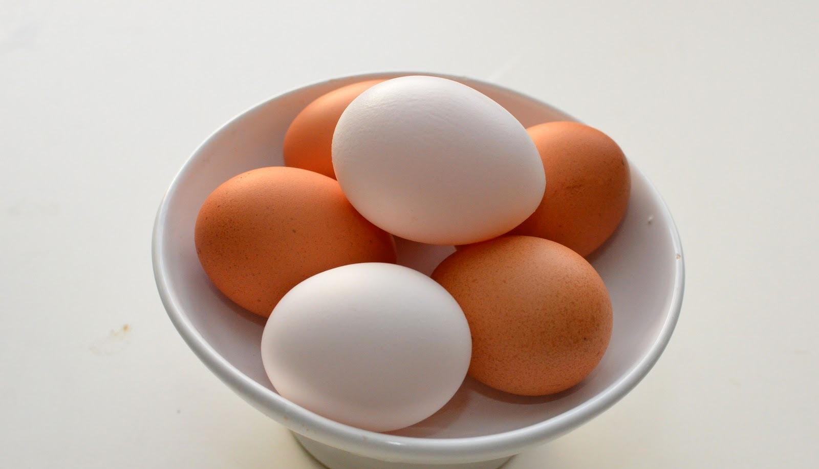 Яйцо картинки для детей