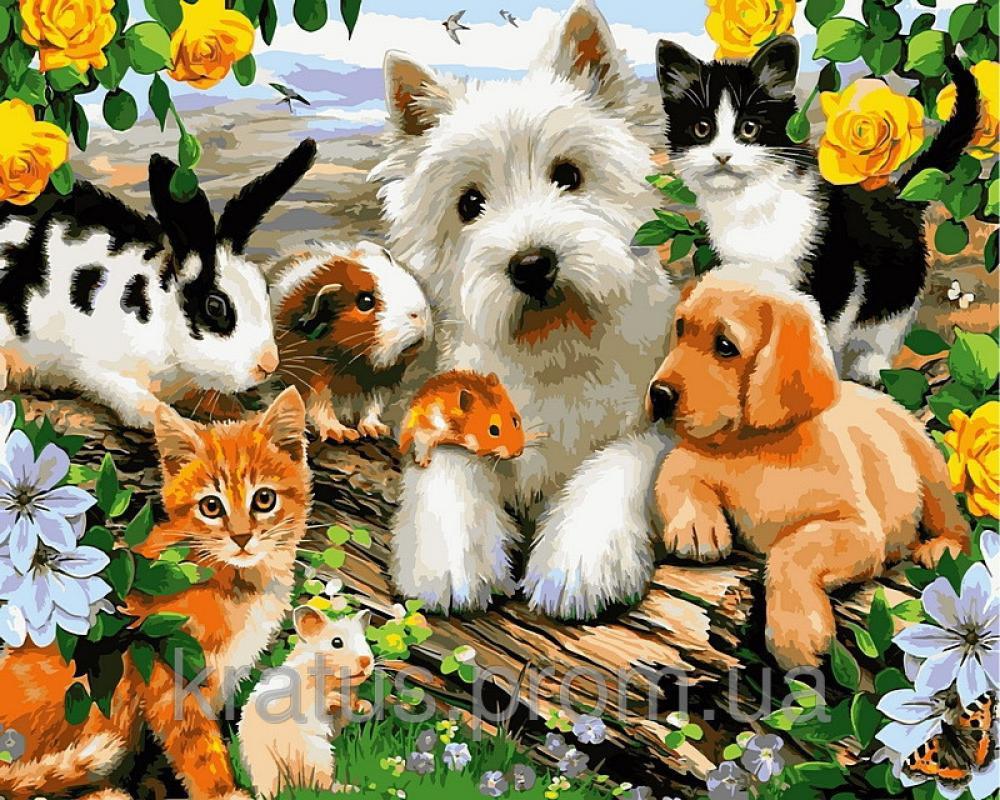 открытка семья собака красивый сорт розовыми