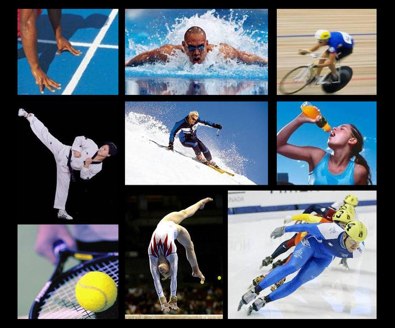 Картинка про все виды спорта