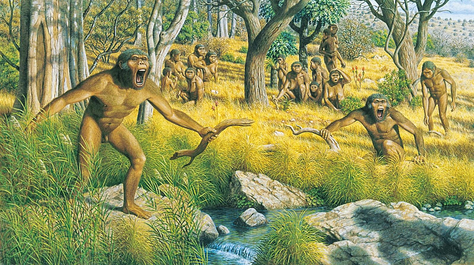 древние предки человека картинки человека состоит