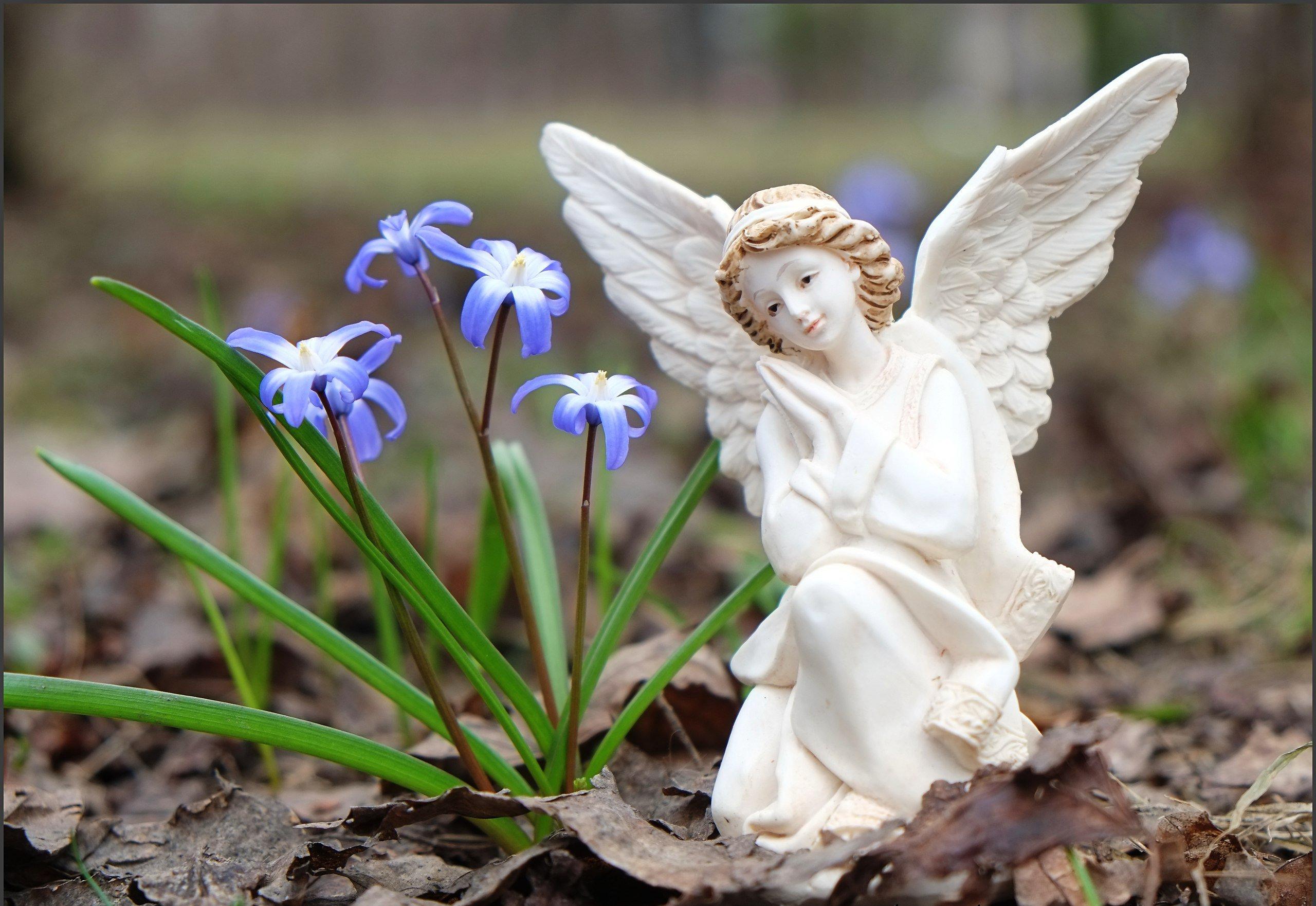 фото красивого ангела счастья любишь