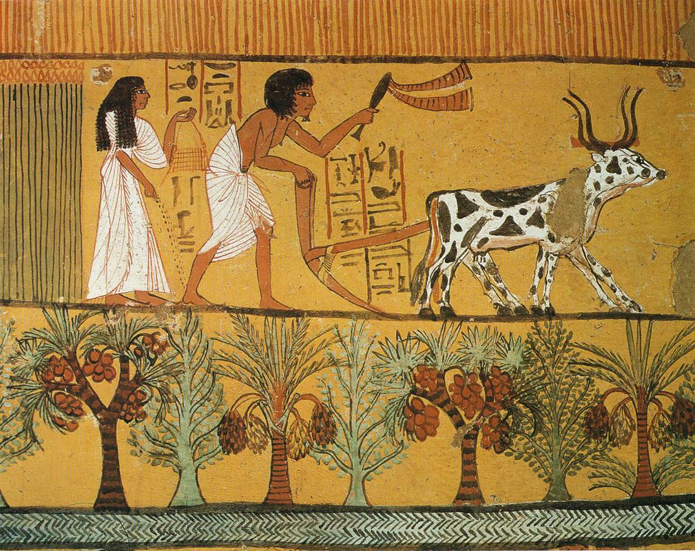 Картинки быта в египте