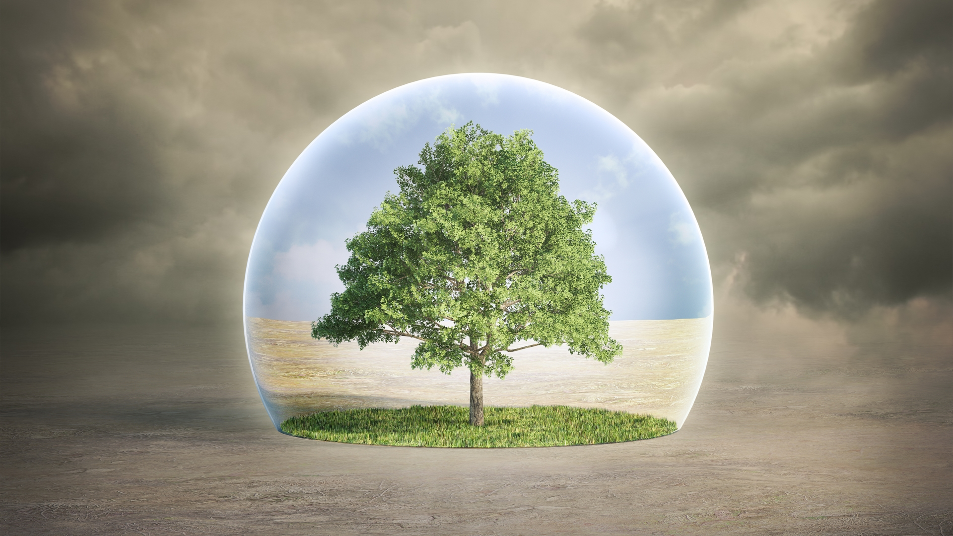 theory georgiou environmentally aware - HD1920×1080