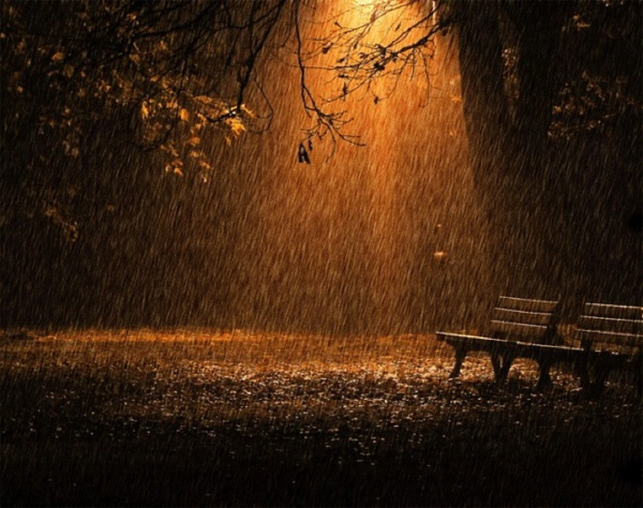 sad rainy night - HD 1320×1042
