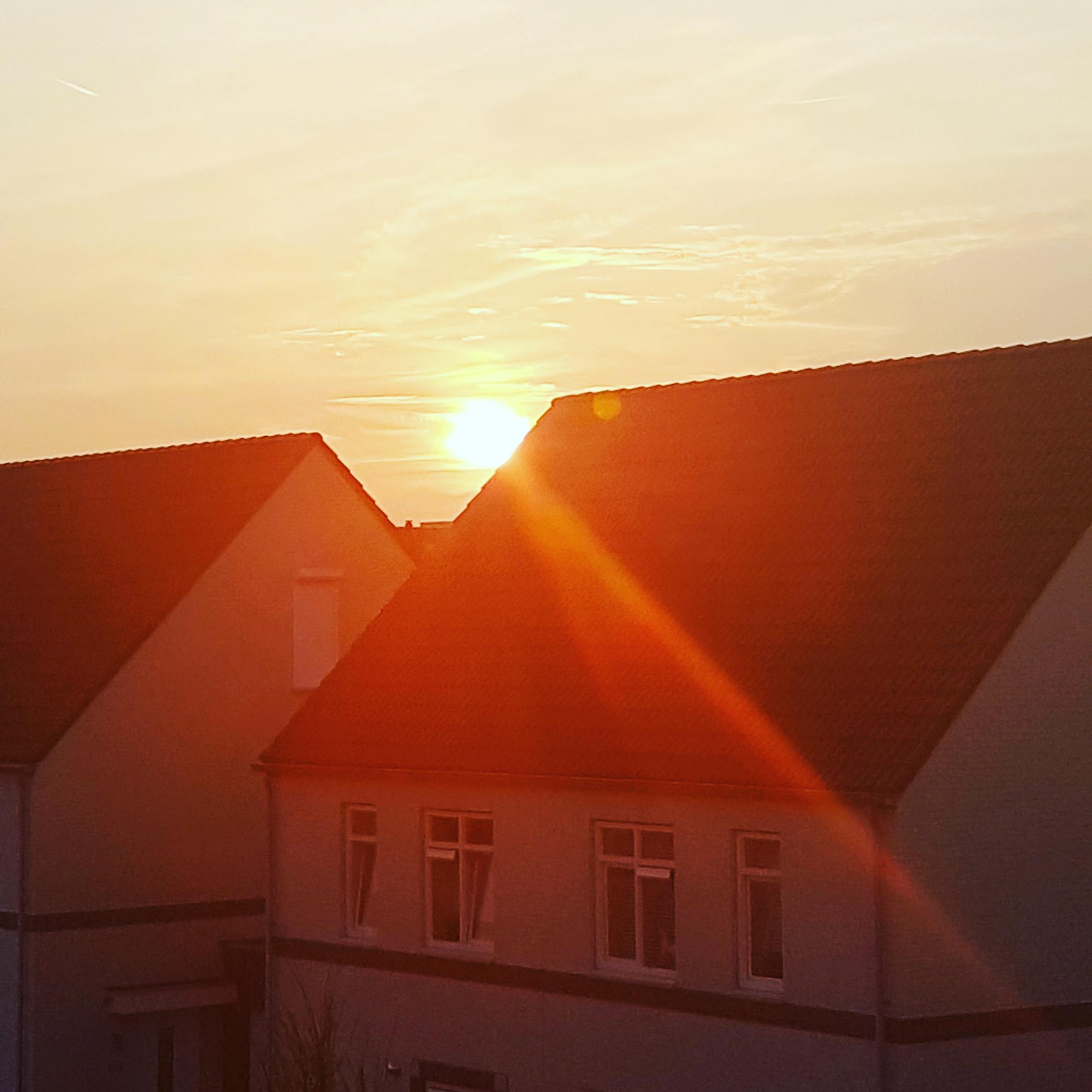 картинка дом любви и солнца жители выкладывают фотографии