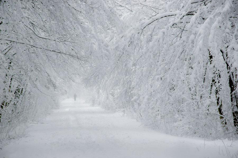 девушка картинка белый снег пушистый заметно