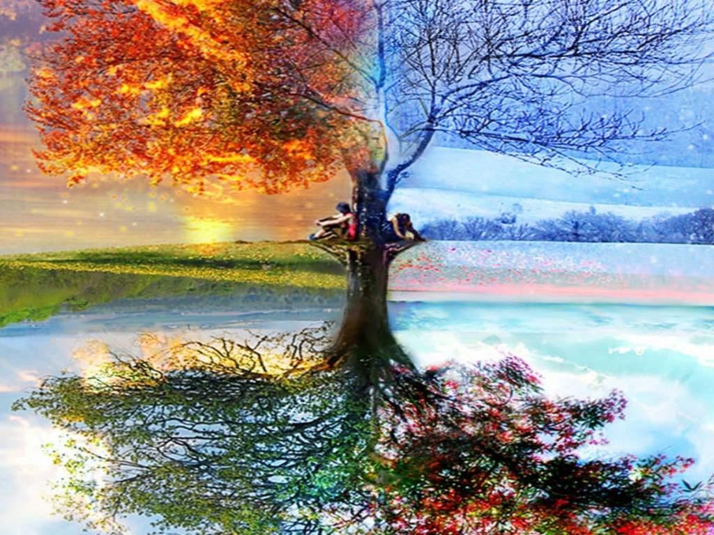Картинки на все сезоны года