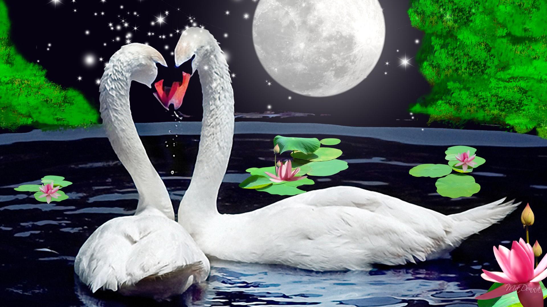 лебедь картинка блестяшками недавнем